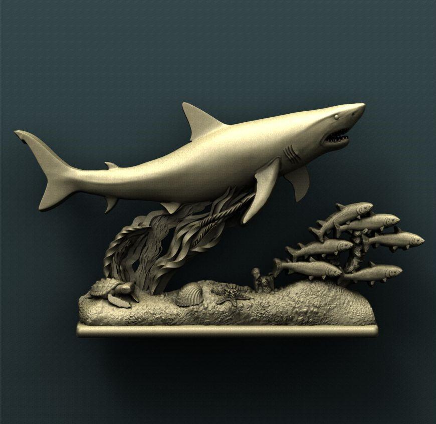 0078. Shark