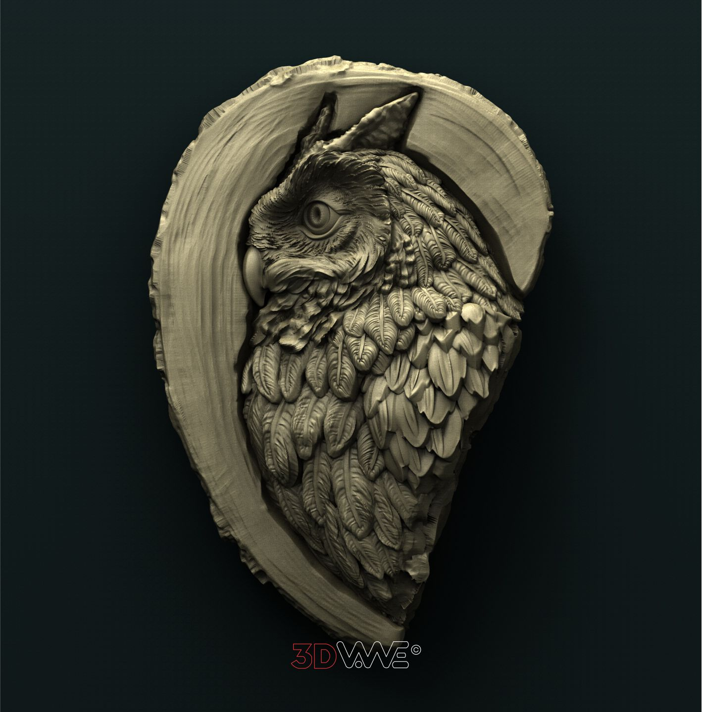 0905 Owl